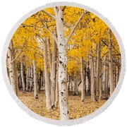 Last Of The Aspen Leaves Round Beach Towel