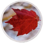 Last Of The Leaves Nature Photograph Round Beach Towel