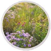 Last Rays Of Sun Light Wildflowers In Moraine Hills Sp Round Beach Towel