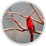 Last Snow Of Winter, Cardinal Round Beach Towel