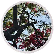 Late Afternoon Tree Silhouette With Bougainvilleas I Round Beach Towel