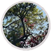 Late Afternoon Tree Silhouette With Bougainvileas II Round Beach Towel