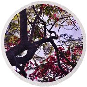 Late Afternoon Tree Silhouette With Bougainvilleas IIi Round Beach Towel