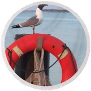 Laughing Gull At Lewes Round Beach Towel