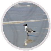 Laughing Gull Reflecting Round Beach Towel
