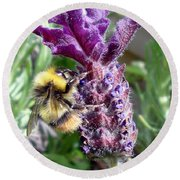 Lavender And Busy Bee. Round Beach Towel