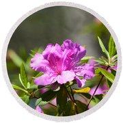 Lavender Rhododendrun Round Beach Towel