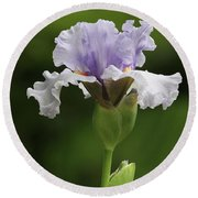 Lavender Bearded Iris #2 Round Beach Towel