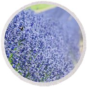 Lavender Blossoms Round Beach Towel