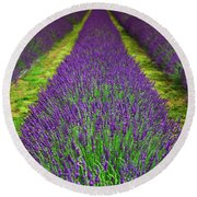 Lavender Dream Round Beach Towel
