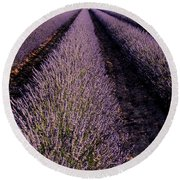 Lavender Field Provence France Round Beach Towel