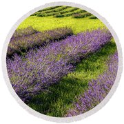 Lavender Fields Forever Round Beach Towel by Kendall McKernon