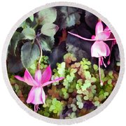 Lavender Fuchsias Just Hanging Around The Garden Round Beach Towel
