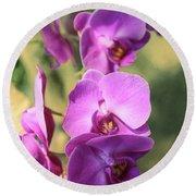 Lavender Orchids Round Beach Towel