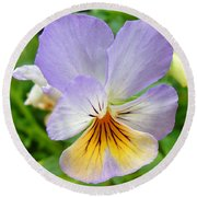 Lavender Pansy Round Beach Towel