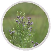 Lavender Purple Verbena Wildflowers  Round Beach Towel
