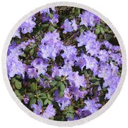 Lavender Rhododendrons Round Beach Towel