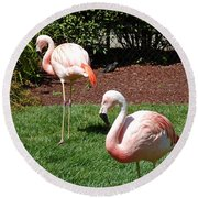 Lawn Ornaments Round Beach Towel