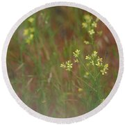 Lay In The Meadow Round Beach Towel