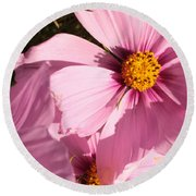 Layers Of Pink Cosmos Round Beach Towel
