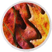 Layers Of Shades Of Autumn Round Beach Towel