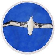Laysan Albatross Round Beach Towel