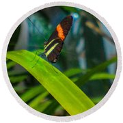 Lazy Butterfly Round Beach Towel