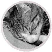Lea Sleepy Cat Round Beach Towel