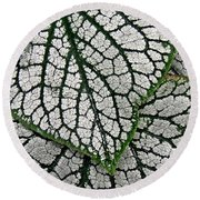 Leaf Abstract 19 Round Beach Towel