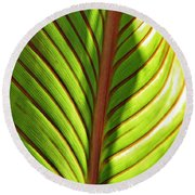 Leaf Abstract  23 Round Beach Towel
