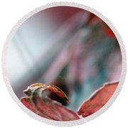 Leaf Abstract I Round Beach Towel