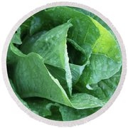 Leaf Lettuce Part 4 Round Beach Towel