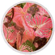 Leaf Of Color Round Beach Towel