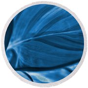 Leaf Of Plant Round Beach Towel