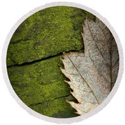 Leaf On Green Wood Round Beach Towel