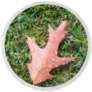 Leaf Resisting The Rain Round Beach Towel
