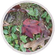 Leaf Standing Out In A Crowd Round Beach Towel