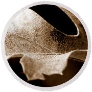 Leaf Study In Sepia Round Beach Towel