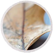 Leaf Study Vii Round Beach Towel
