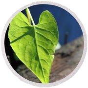 Leafy Veins Round Beach Towel