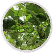 Leafy Vines Round Beach Towel