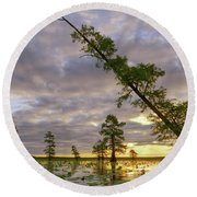 Leaning Cypress Round Beach Towel