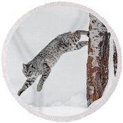Leapin Bobcat Round Beach Towel
