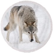 Leary Wolf Style Round Beach Towel