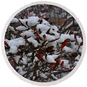 Leaves And Powery Snow Round Beach Towel