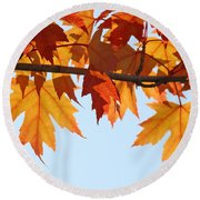 Leaves Autumn Orange Sunlit Fall Leaves Blue Sky Baslee Troutman Round Beach Towel