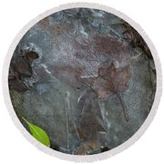 Leaves In Ice At Upper Creek Falls Round Beach Towel