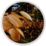 Leaves In Late Autumn Round Beach Towel
