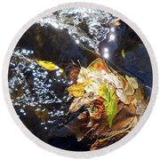 Leaves In River Round Beach Towel
