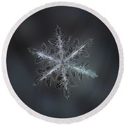Leaves Of Ice II Round Beach Towel